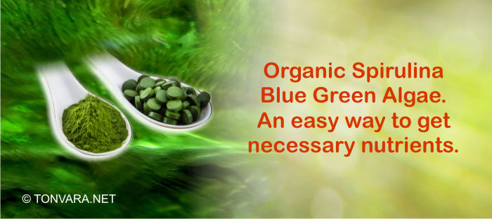 Organic Spirulina - the most nutritious and concentrated natural food on the planet?