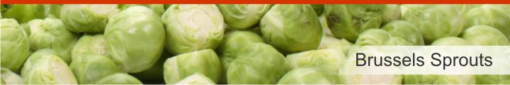 Image of Brussels sprouts from a list of 10 foods high in dietary fibre