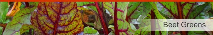 Image of beet greens from a list of 15 foods high in electrolytes for good hydration