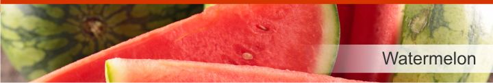 Image of watermelon from a list of 20 foods with a near zero calories count