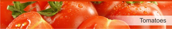 Image of tomatoes from a list of 20 foods with a near zero calories count